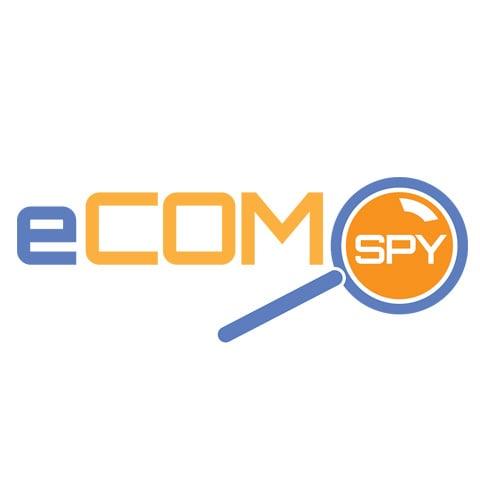 2013-ecomSpy