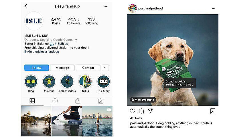 Examples of branded Instagram page and post