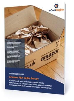 "eBook cover with text, ""Amazon FBA seller survey"""
