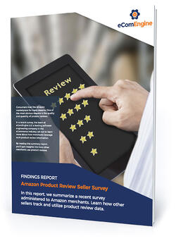 """eBook cover with text, """"Amazon product review seller survey"""""""