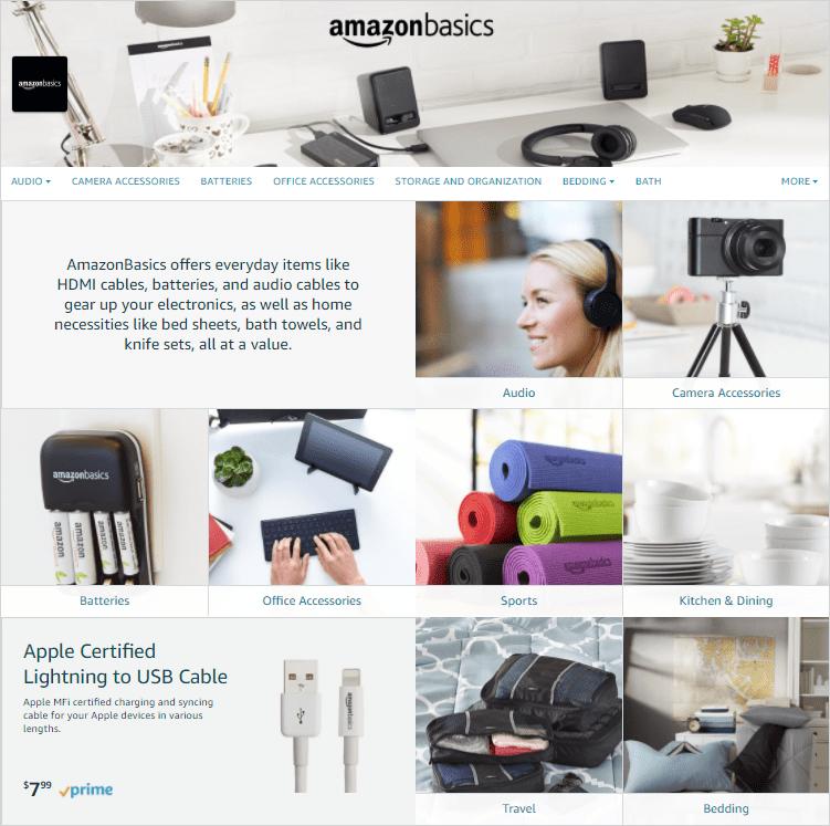 Amazon Basics store example