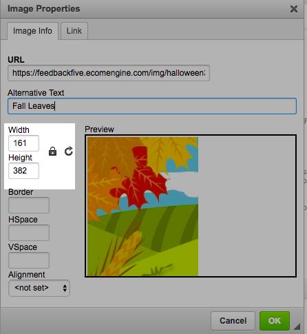 Image properties window inside the email template editor in FeedbackFive