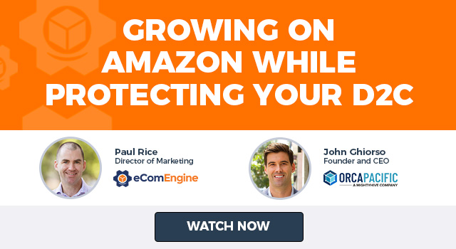 "Photos of the presenting experts with text, ""Growing on Amazon While Protecting Your D2C"""