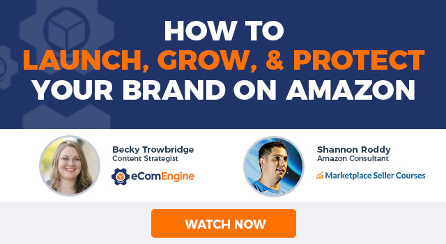 "Photos of the presenting experts with text, ""How to Launch, Grow, and Protect Your Brand on Amazon"""