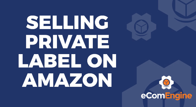 "Blue background and eComEngine logo with text, ""Selling Private Label on Amazon"""