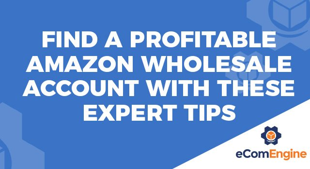 "Light blue background and eComEngine logo with text, ""Find a Profitable Amazon Wholesale Account With These Expert Tips"""